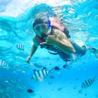 マニャガハ島の透明な海でシュノーケリングを楽しむ