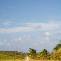 テニアン島のどこまでも続く一本道