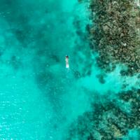 マニャガハ島の生きたサンゴの間を泳ごう!